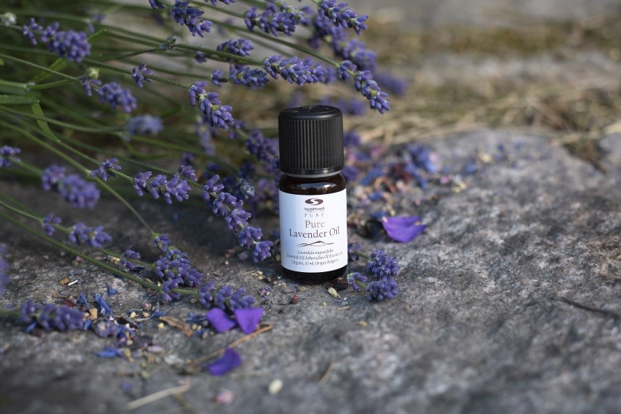 pure lavender oil with lavender flowers,